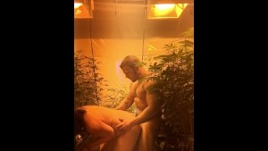 Quickie in the grow! Tight pussy didn t last long ;)
